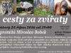 bobek_zvirata_80