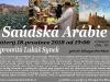 synek_saudska_80